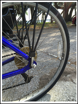 Withlacoochee BikeTire